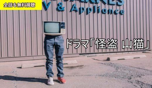 ドラマ 怪盗 山猫 1話~最終回の動画フル無料視聴!Dailymotion/Pandora動画配信/DVDレンタルサイト最新情報