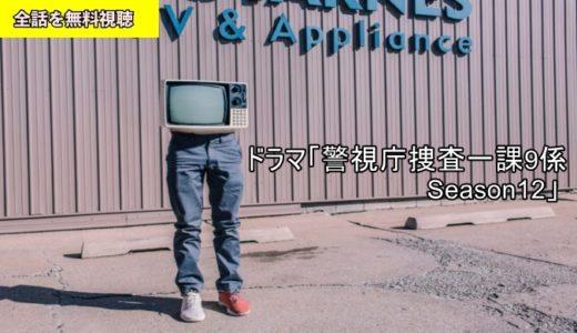 ドラマ 警視庁捜査一課9係 Season12 全話動画フル無料視聴!Pandora/フリドラ/Dailymotion動画配信サイト最新情報